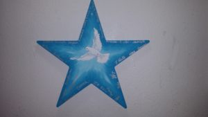 humane society of san beranrdino valley, san bernardino, stars of hope